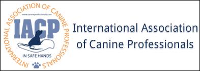 IACP logo